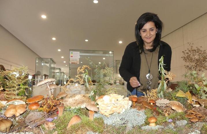 Ciudadanos Albacete apuesta por la afición de recolección de setas como atractivo turístico para la provincia