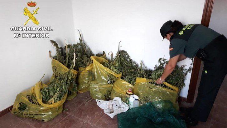 Intervenidos trece kilos de marihuana y detenidos dos hombres en Mota del Cuervo (Cuenca)