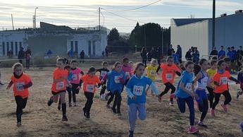 500 jóvenes se reúnen en el campeonato de deporte en edad escolar en el circuito de campo a través en Tobarra