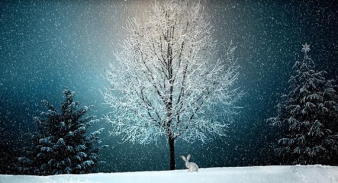¿Buscas destino para estas navidades?