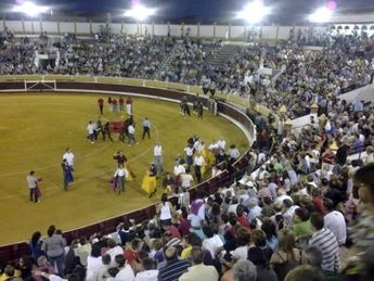 La Asociación AFAEM ya está trabajando en su festival taurino de Villarrobledo