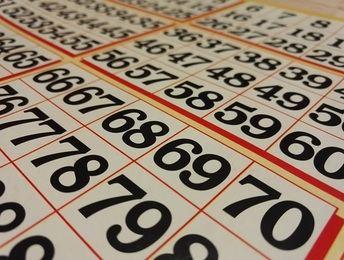 Descubre el bingo online