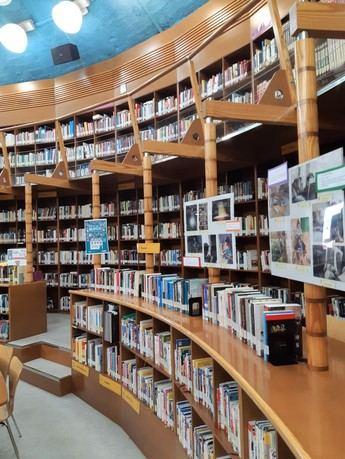 Las bibliotecas de Albacete continuarán con los servicios de préstamo y devolución con cita previa