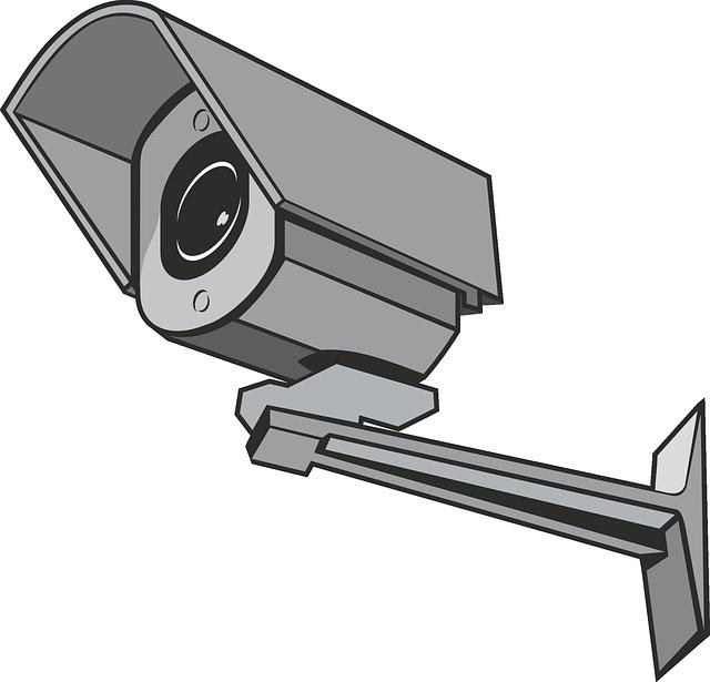¿Cómo elegir y colocar una cámara de vigilancia?