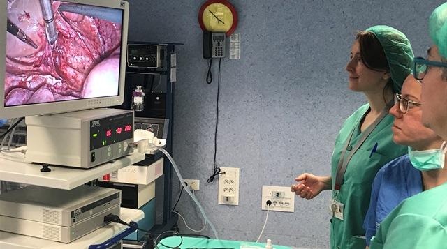 Ginecólogos amplían sus conocimientos con un curso en Albacete sobre cirugía endoscópica