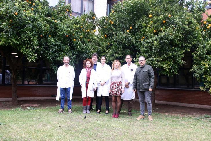 El Hospital de Alcázar de San Juan forma parte de la Red Global de hospitales verdes y saludables
