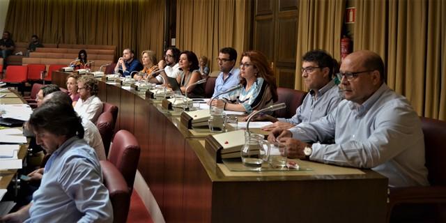 Aprobado en el pleno del Ayuntamiento de Albacete el programa 'Mujer y Deporte' y el Año Europeo del Patrimonio Cultural