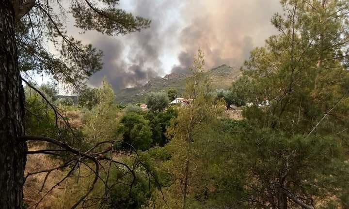 Imagen de archivo de un incendio en la sierra albaceteña.