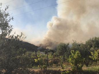 Tristes imágenes del incendio de Yeste del año 2017.