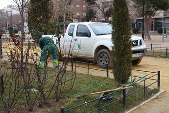 El Ayuntamiento de La Roda realiza una intensa replantación de sus zonas verdes