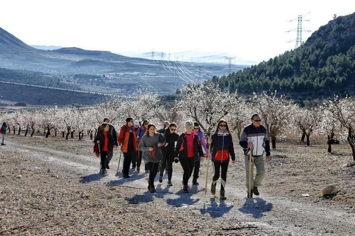 Fantástico día en la VI ruta de senderismo de la Diputación celebrada en Ontur