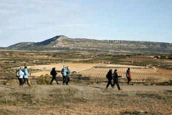 Alpera acogió con hielo y sol la VI edición de las rutas senderistas de la Diputación