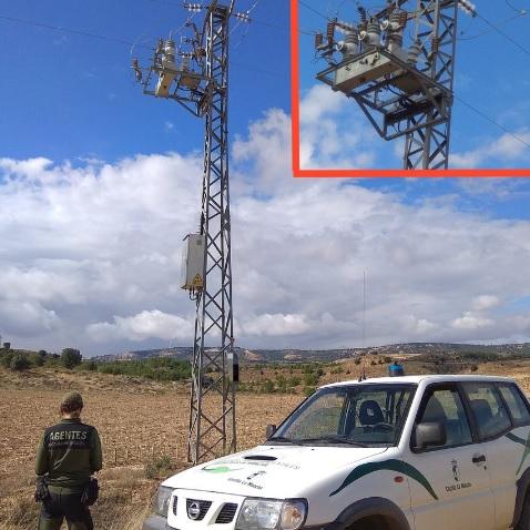 Agentes Medioambientales inspeccionando los tendidos eléctricos.