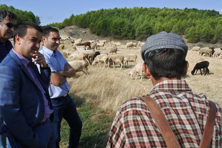 3.500 agricultores y ganaderos en zonas de montaña de Castilla-La Mancha reciben más de 5,4 millones de euros en ayudas