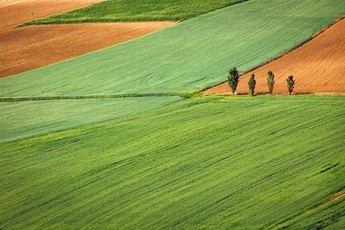 La importancia de la maquinaria agrícola en la agricultura de Albacete