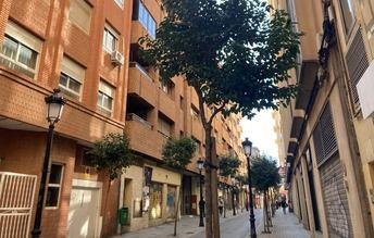 El Ayuntamiento de Albacete pone en marcha un plan para reponer 737 árboles en las calles de la ciudad
