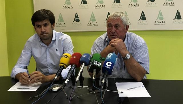 La sequía reduce un 50 % la cosecha de olivar y un 27 % el almendro y cereal, en Castilla-La Mancha
