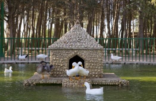 El Ayuntamiento de Albacete celebra el Día Mundial del Medio Ambiente con numerosas actividades