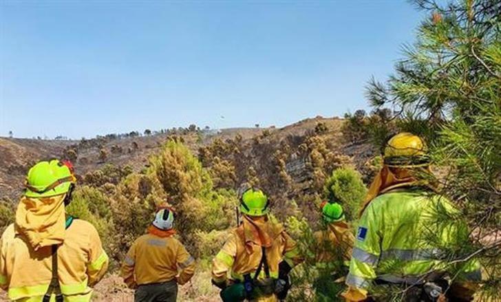 La superficie afectada por incendios en Castilla-La Mancha cae un 82% con un total de 87 fuegos registrados