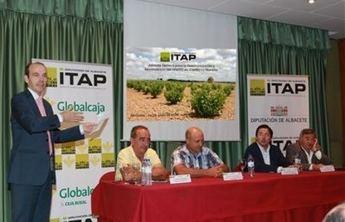 El ITAP organiza una jornada técnica de reestructuración y reconversión del viñedo en Castilla-La Mancha, junto con Globalcaja