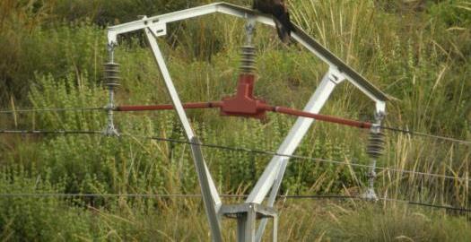 La caída de un cable eléctrico corta la N-322 en Balazote (Albacete)