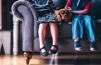 El calzado infantil de moda para este nuevo año