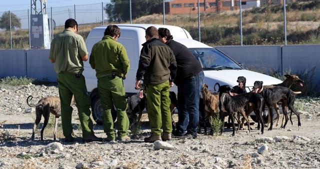 El Tribunal Constitucional admite a trámite el recurso contra la ley de caza de Castilla-La Mancha