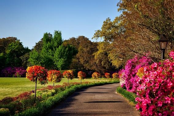 Cómo mantener un jardín en perfectas condiciones