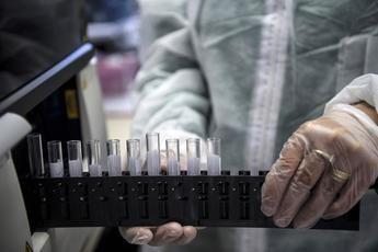 36 nuevos casos en Castilla-La Mancha, 14 en Ciudad Real, 8 en Toledo, 6 en Guadalajara, 4 en Albacete y 4 en Cuenca