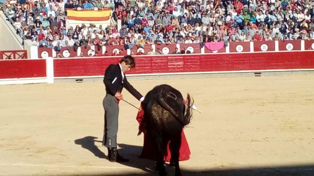 Albacete se volcó, como siempre, con el festival taurino del Cotolengo