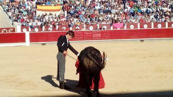 El festival del Cotolengo recaudó una cifra de 62.100 euros netos a favor de la entidad solidaria de Albacete