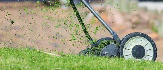 Desbrozadoras para eliminar las malas hierbas de nuestro jardín