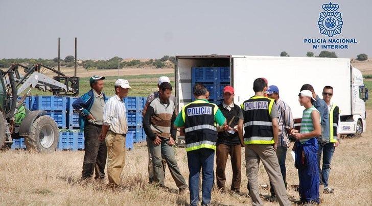 25 detenidos en Albacete por explotación laboral en una operación contra la inmigración ilegal