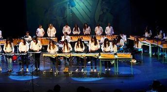 El próximo martes comienza el IV ciclo de conciertos de música en el IES Universidad Laboral de Albacete
