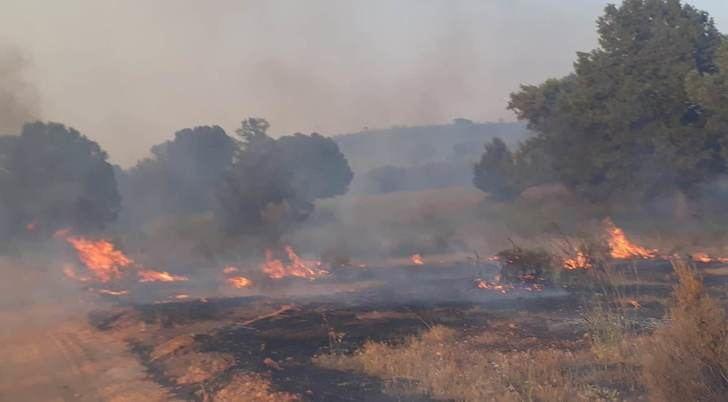 Todas las imágenes son del incendio de El Bonillo de este domingo.