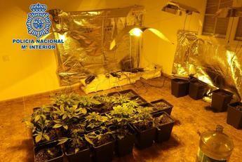 Un grupo de estafadores tenía su centro de operaciones en una casa ocupada de Cobisa (Toledo)
