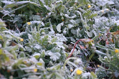 Castilla-La Mancha registra 14 incidencias por hielo y nieve en la madrugada de este miércoles