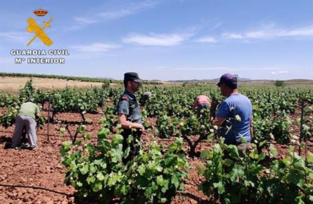 Dos detenidos y un investigado en Montealegre del Castillo (Albacete) por usurpar la identidad de otra persona para trabajar