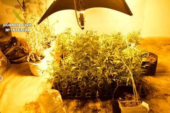 La Guardia Civil de Cuenca desarticula 3 grupos criminales dedicados al tráfico de drogas y detiene a 32 personas