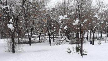 Más de 2.000 personas siguen sin electricidad en Toledo y Cuenca debido a la nieve