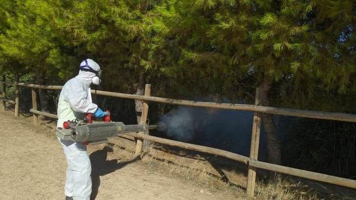 El Ayuntamiento y Aguas de Albacete inician el plan de fumigación en el canal de María Cristina, por los mosquitos
