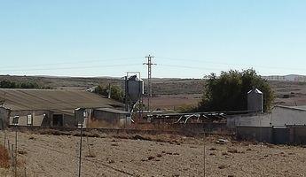 Castilla-La Mancha ampliará hasta los dos kilómetros la distancia de instalación de granjas a los núcleos urbanos