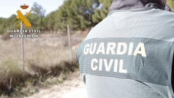 Tres investigados por robo en establecimientos de Ciudad Real, Toledo, Cuenca y Albacete