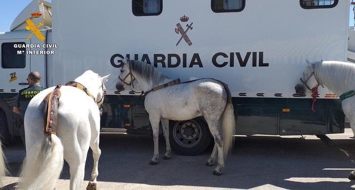 La Guardia Civil participa este año en Expovicaman de Albacete, la Feria Ganadera de Castilla-La Mancha