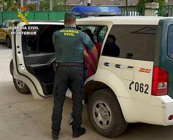 La Guardia Civil de Seseña (Toledo) detiene a tres personas que estafaban a través de Internet con falsas adopciones de gatos