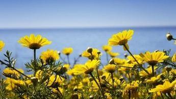 Hábitos saludables también en primavera