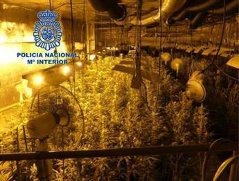 36 detenidos de un grupo especialmente violento que vendía droga en Toledo, Cáceres y Salamanca