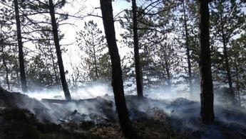 Localizan el cadáver de un hombre octogenario durante extinción de un incendio en Agramón (Hellín)
