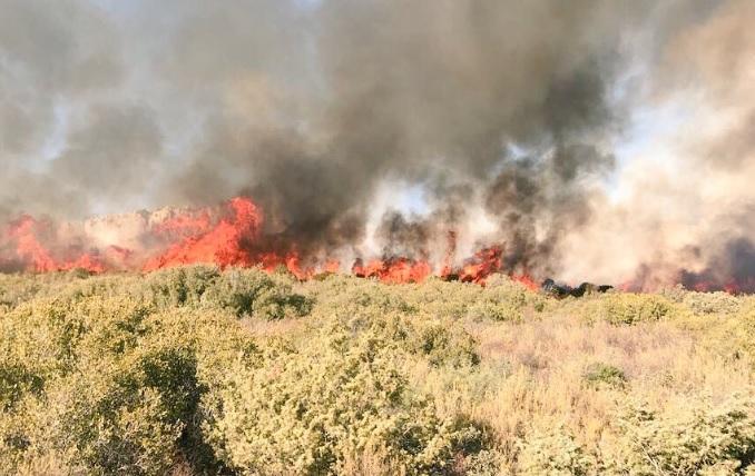 La Junta destina 17,4 millones a vigilancia y extinción de incendios en la provincia de Albacete