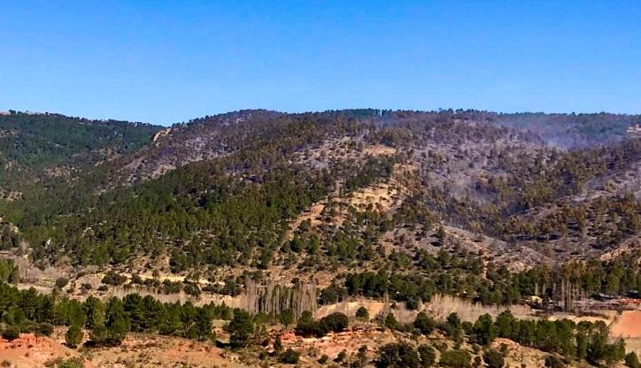 El incendio de Paterna del Madera (Albacete) ya está controlado pero siguen trabajando 15 medios aéreos y terrestres